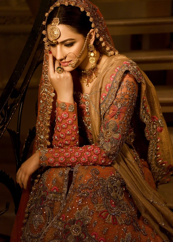 Shiza Hassan Bridal Wedding Dresses Beautiful Look 2020
