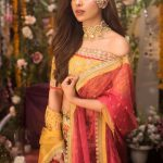 Latest Naubahar Chiffon Collection For Women Looking 2020