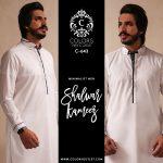 Mens Wear Shalwar Kameez 2019 Newyear Ideas